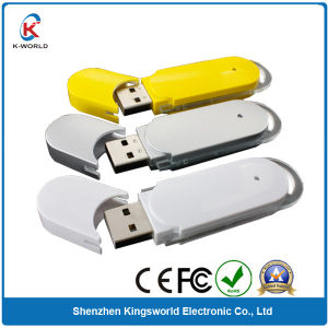 Plastic USB Flash Memory with Factory Prices pictures & photos