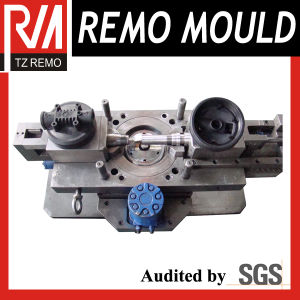 Water Purified Mould pictures & photos