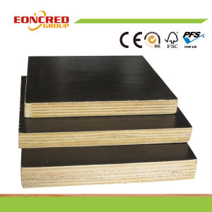 Construction Used Film Faced Plywood