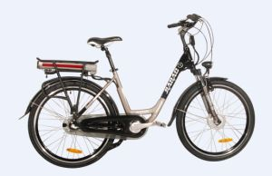 36V 250W New Style Mountain Electric Bike pictures & photos