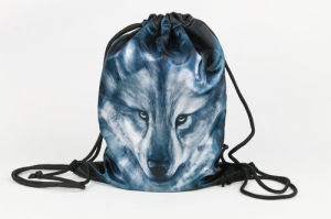 Drawstring Bag, Sports Bag, Drawstring Backpack pictures & photos