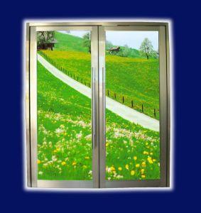 Aluminium Spring Door (LZ46)