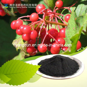 CAS No: 4852-22-6 Cranberry Extract Proanthocyanidins pictures & photos