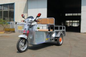 Three Wheel Electric Motorcycle with 2 Person pictures & photos