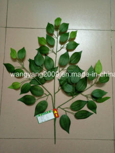 Artificial Fake Synthetic Ficus Banyan Leaves pictures & photos