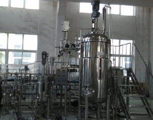 Customized Pilot Scale Mechanical Stirred Stainless Steel Fermentor pictures & photos