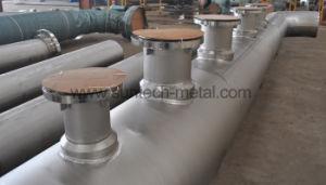 Titanium Welded Pipe/Tube (W010) pictures & photos