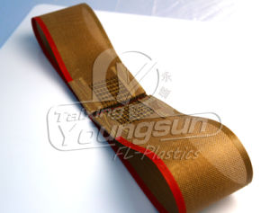 PTFE Glssfiber Fabric Conveyor Belt pictures & photos