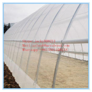 7% UV Protection Anti Aphid Netting, Anti Insect Net 50X25 4m Width pictures & photos