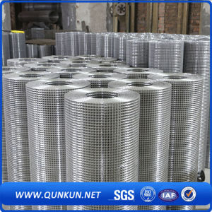 1X1 Galvanized Inch Welded Wire Mesh with Factory with Factory Price pictures & photos