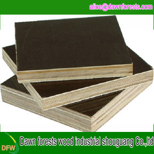 18mm Thickness Construction Plywood/Plywood Sheet pictures & photos