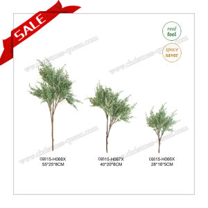 80cm PE Handcraft New Holiday Gift Decorative Christmas Gift pictures & photos