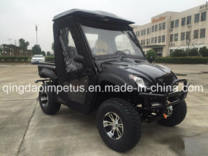 2017 New Model Electric UTV 4X4 Side by Side 2 Seats pictures & photos