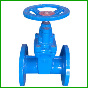 Resilent Seated Gate Valve-Rubber Lined Gate Valve pictures & photos