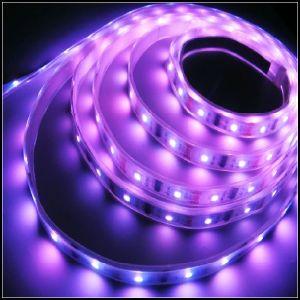 Green SMD 5050 LED Strip Light, Waterproof Strip Lighting, 60LEDs/M