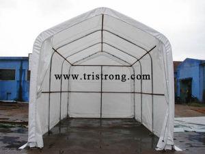 Animal Shelter, RV Parking Building, Metal Carport (tsu-1323/tsu-1326) pictures & photos