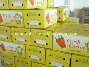 10kg Carton Fresh Carrot (150-200G) pictures & photos