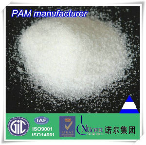 PAM / Polyacrylamde / Polyelectrolyte Paper Retention and Drainage Agent for Papermaking Chemicals