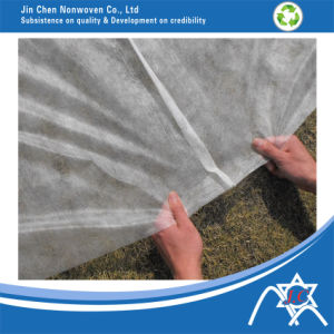 Non Woven Polyester Fabric pictures & photos