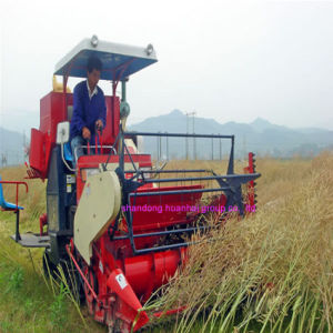 4lz-3.0 Combine Harvester pictures & photos