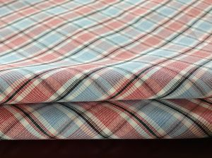 100% Cotton Big Check Fabric for Casual Shirts (087)
