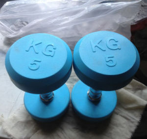 High Quality Color Rubber Coated Dumbbell (SA03-A) pictures & photos