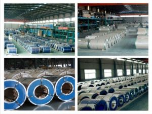 Chinese Ppcr Prepainted Galvanised Steel Coils in SPCC Dx51 Grade pictures & photos
