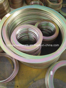 Outer Rings for Spiral  Wound Gasket pictures & photos