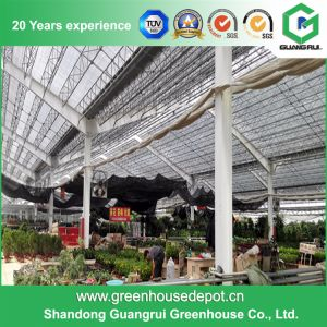 China Agriculture Multi-Span Plastic Green House pictures & photos