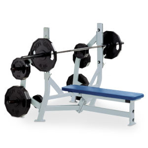 Gym Equipment Hammer Strength / Olympic Bench Weight Storage (SF1-3007) pictures & photos