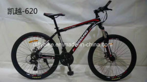 Low Price Alloy MTB Bike, Alloy Mountain Bicycle, pictures & photos