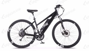 Step-Thru Electric Bicycle Torque Sensor Frame Integrated Large Capacity Lithium Battery pictures & photos