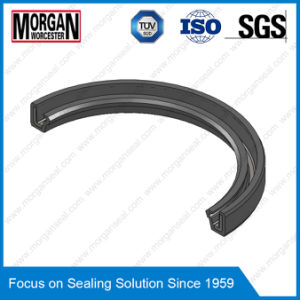 Sc/a Type Single Lip Inner Skeleton Rubber Oil Seal pictures & photos