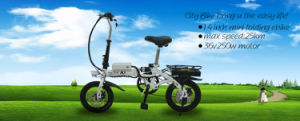 "2015 New 14"" Folding E Bike/Electric Bike on Sale pictures & photos"
