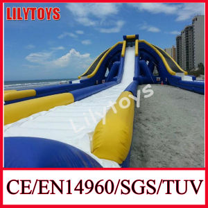 2014 New Big Trippo Slide, Water Trippo Slide, Water Hippo Slide pictures & photos