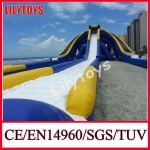2014 New Big Trippo Slide, Water Trippo Slide, Water Hippo Slide