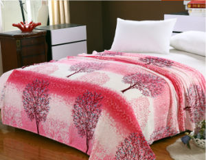 Sr-F170213-17 High Quality Two Side 100% Polyester Printed Flannel Fabric pictures & photos