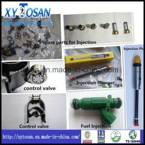 Fuel Injection Spare Parts for Control Valve & Injection Plunger pictures & photos