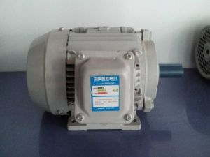 [Yx3-90L-2-B3]Yx3 Series Three Phase High Effiiency Ie2, Eff1 Electric Motors with CE, CCC Certificate, OEM Supplier pictures & photos