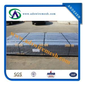 2X2′′ Galvanzied Welded Wire Mesh Panel pictures & photos