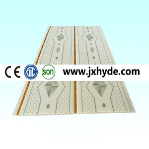 Commerical Ceiling Panels (RN-168) pictures & photos