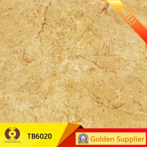 Home Decoration Polished Porcelain Natural Stone Floor Tile (ST2105) pictures & photos
