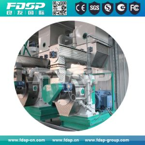 China Made 2tph Bamboo Pellet Mill Machine for Sale pictures & photos