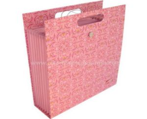 Custom Luxury White Paper Bag for Clothes and Shopping pictures & photos