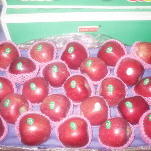 2017 New Crop Fresh Red Apple pictures & photos