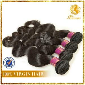 Brazilian Virgin Remy Hair Weft pictures & photos