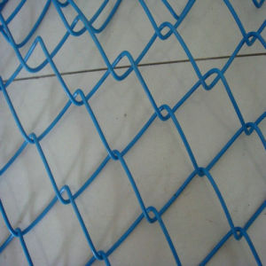 PVC Coating Chain Link Fencing Garden Fence pictures & photos
