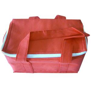 Non-Woven Cooler Bag (TL802) pictures & photos