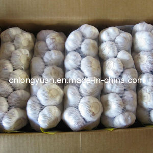 Chinese Pure White Garlic 1kg Bag Small Package pictures & photos