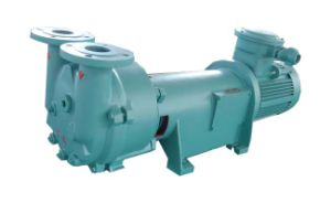 Water Ring Vacuum Pump (2BV6 121) pictures & photos